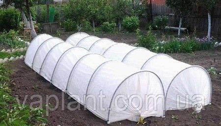 ПарничОК из агроволокна  (3м-0.8м) с железными дугами