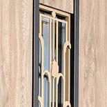 Двері вхідні вуличні STRAJ Toscana, фото 2