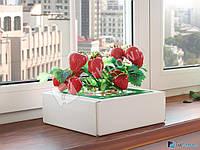 Сказочный сбор , Чудо-ягодница – набор для выращивания клубники на подоконнике