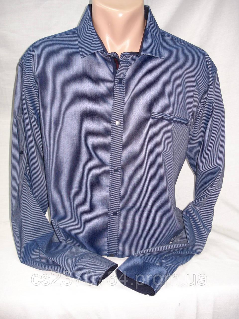 Рубашка мужская притал. ZOMANA синяя в мелкую полоску.(M,L,XL,2XL,3XL)