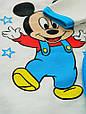 Тёплый комплект с начесом для мальчика Микки на рост 80-86 см, фото 7