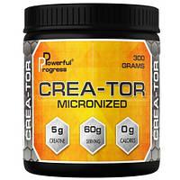 Powerful Progress Crea-Tor Micronized (300 g)