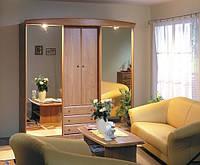 шкаф из дерева с зеркалами фото 92