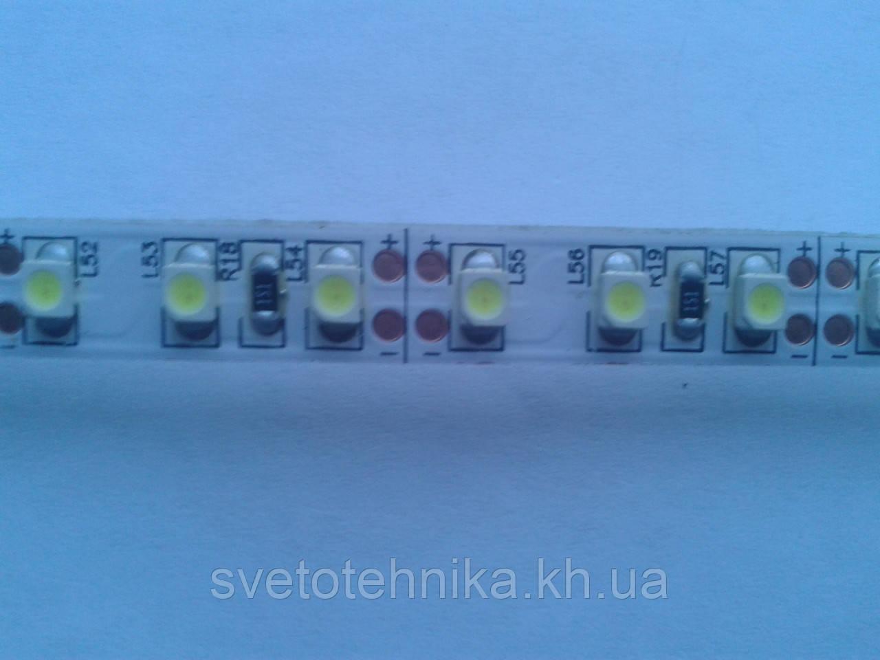 Лента MagicLed (чип пр-ва Тайвань) стандартной яркости без сил 2-я плотность(120шт/м) белая тёплая