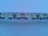 Лента MagicLed (чип пр-ва Тайвань) стандартной яркости без сил 2-я плотность(120шт/м) белая тёплая, фото 1