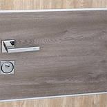 Двері вхідні вуличні STRAJ Party C, фото 3