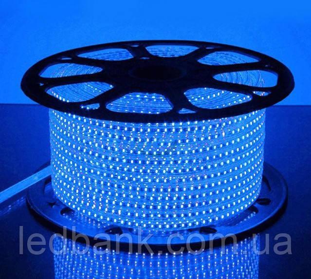 Светодиодная лента 220 вольт SMD 2835 120LED IP68 Синяя