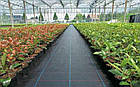 Агроткань НА МЕТРАЖ против сорняков PP, черная UV, 105 гр/м²  1,05м Bradas, фото 3
