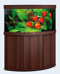 Аквариум угловой большой Juwel (Джувел) TRIGON 350 LED, коричневый 350 литров