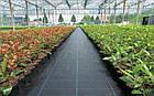 Агроткань НА МЕТРАЖ против сорняков PP, черная UV, 100 гр/м²  1.6 м Bradas, фото 3