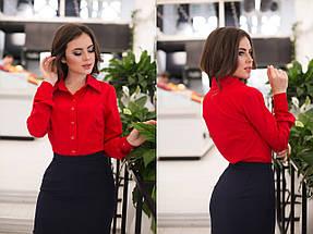 """Классическая женская рубашка """"Calliope"""" с длинным рукавом (11 цветов), фото 3"""