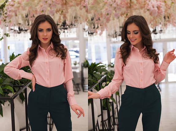 """Классическая женская рубашка """"Calliope"""" с длинным рукавом (11 цветов), фото 2"""