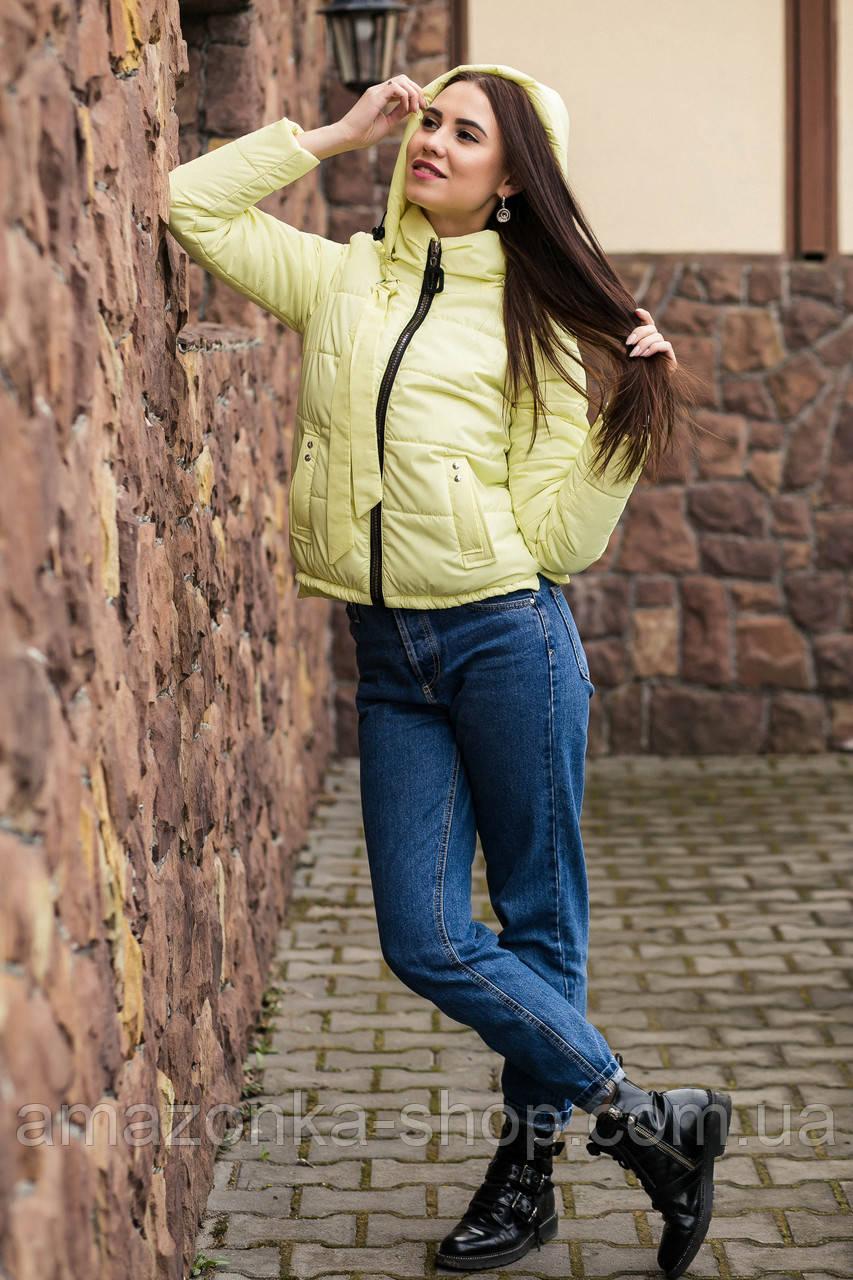 Подростковая ветровка для девушек - модель 2019 - (кт-466)