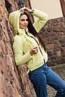 Подростковая ветровка для девушек - модель 2019 - (кт-466), фото 3