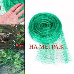 Защитная сетка от птиц зеленая 4м НА МЕТРАЖ Bradas