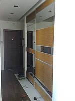 Шкаф купе с вставками из шпона