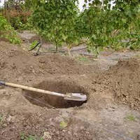 Подготовка почвы для закладки сада или огорода