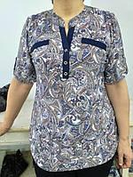 Кофта женская  размер 50-52-54-56-58-60