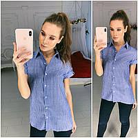 188920fe6f07 Рубашку Блуза — Купить Недорого у Проверенных Продавцов на Bigl.ua