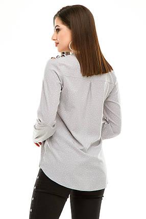 Блузка 291 светло-серый горох, фото 2