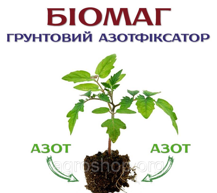 Биомаг (азотфиксатор почвенный)1 л.