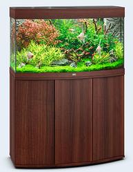 Акваріум середній Juwel (Джувел) VISION 180 LED з вигнутим склом, коричневий 180 літрів
