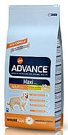 Корм для собак крупных пород Advance Dog Maxi Adult