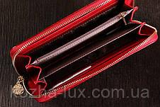 Кошелек женский кожаный темно красный на молнии, кожа натуральная, фото 2