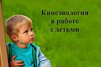 """Видео семинара """"Кинезиология в работе с детьми"""""""