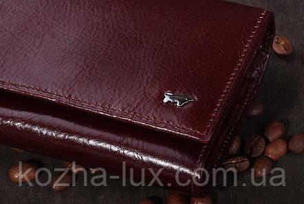 Кошелек женский кожаный Braun Buffel, натуральная кожа, фото 2