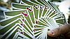 Карты игральные | Cherry Casino Fremonts (Sahara Green)  Playing Cards By Pure Imagination Projects, фото 2