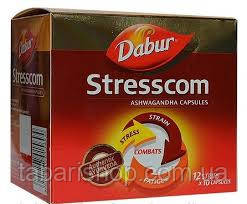 Stresscom - эффективная аюрведическая формула от депрессии и перенапряжения