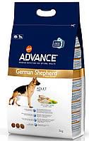Корм для немецких овчарок Advance Maxi German Shepherd