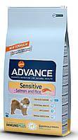 Корм для чувствительных собак Advance Dog Sensitive 12 кг