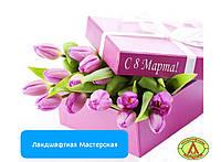8 марта: Ландшафтная Мастерская поздравляет