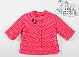 Весенняя курточка для девочки 3/4 рукав  Моне р-ры 116, фото 2