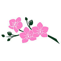 Виниловая наклейка на стену Розовая орхидея