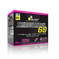 Повышение тестостерона Tribusteron 60 (120 caps)