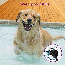 Ошейник для собак PetFere электронный водонепроницаемый, фото 2