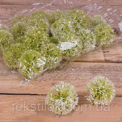 Головка чеснок зеленый