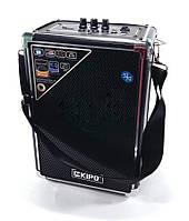 Колонка-чемодан Kipo KB-Q2, фото 1
