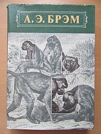 А.Э.Брэм. Жизнь животных. Два тома. Млекопитающие. Птицы