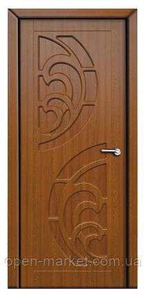Модель Прибой (золотой дуб)  ПГ, межкомнатные двери, Николаев, фото 2