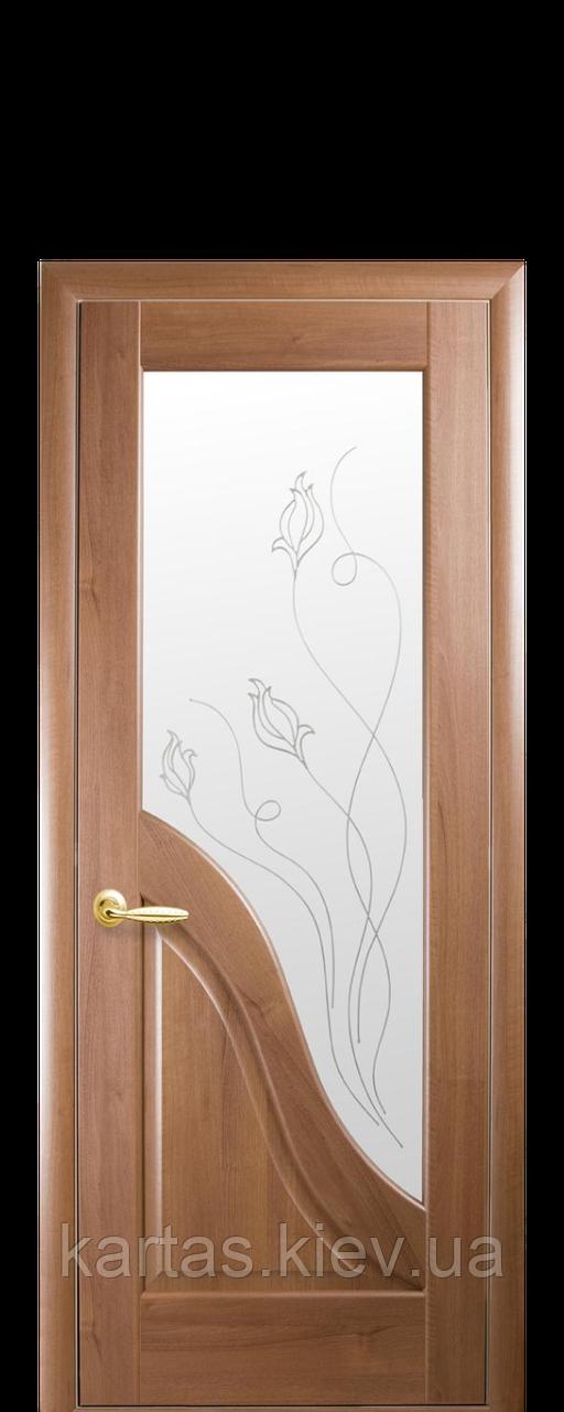 Дверное полотно Амата Золотая ольха со стеклом сатин с рисунком Р2