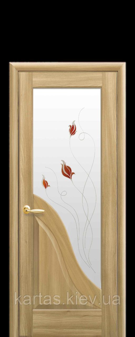 Дверное полотно Амата Золотой дуб со стеклом сатин с рисунком Р2