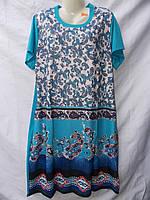 Трикотажне жіноче плаття (р-р 48-54) оптом в Одесі.