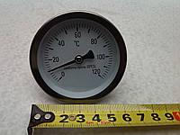 "Термометр на 120C, 1\2"", 5см"
