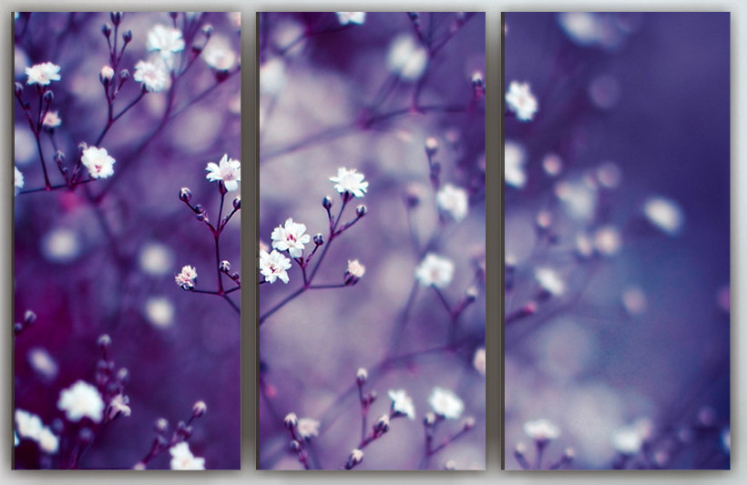 Фотокартина модульная Цветы 90х60