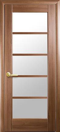 Двери Новый Стиль Муза золотая ольха, коллекция Ностра, фото 2