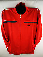 Мужской спортивный костюм Nike большого размера, фото 1